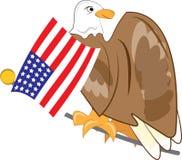 Patriotic Eagle Stock Image