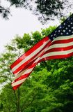 Patriotic Everyday royalty free stock images