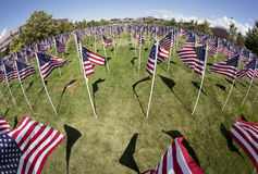Patriotic Flag Display. Fish-eye view of a patriotic flag display from above Stock Photography