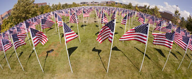 Patriotic Flag Display. Fish-eye view of a patriotic flag display from above Stock Photo