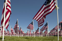Patriotic Flag Display. View of a patriotic flag display from the ground looking up Stock Photos