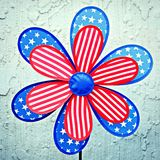 Patriotic Flower royalty free stock photos