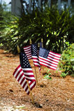Patriotic Garden w/Flags. Small American flags lining up alongside of pathway in garden celebrating partriotic holiday Stock Images