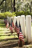 Patriotic graves Stock Image