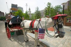 Patriotic horse and carriage with flags in front of Independence Hall, Philadelphia, Pennsylvania Royalty Free Stock Photo