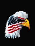 Patriotic painting Royalty Free Stock Image