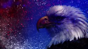 Patriotic Particle Eagle. This video features a moving eagle head against a red, white, and blue glitter background stock video