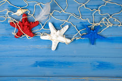 Patriotic starfish in netting on wood Stock Photo
