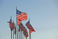 Patriotic United States Flags at dusk Royalty Free Stock Photos