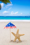 Patriotic USA background with starfishes Stock Photos