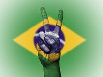 Patriotische Staatsflagge Brasiliens stock abbildung