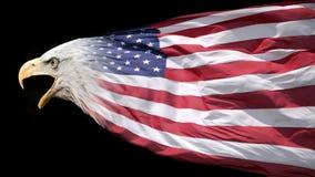 Patriotischer Adler und Markierungsfahne Stockfotos