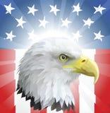 Patriotischer amerikanischer Adler und Markierungsfahne Stockfotos