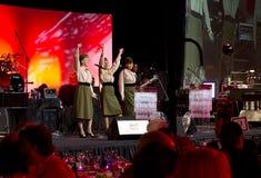 Patriotisches Memorial Day -Konzert Lizenzfreie Stockfotos