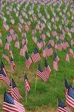 Patriotiska flaggor på gräs- gräsmatta Royaltyfri Foto