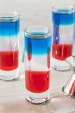 Patriotiska röda vita och blåa skott Arkivbild