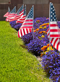Patriotism. American Flags on Front Lawn Garden Royalty Free Stock Photography