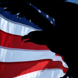 Patriotism. Royalty Free Stock Photography