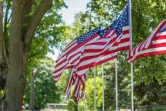 Patriottische Amerikaanse vlaggen die in park op zonnige dag golven royalty-vrije stock afbeelding