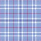 patriotyczna szkocka krata Obrazy Royalty Free