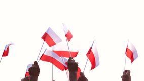 Patriotyczni Polscy ludzie trzyma flagi outdoors zdjęcie wideo