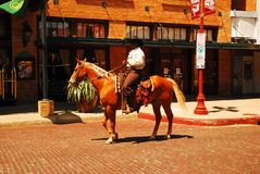 Patrolling the Ft Worth Stock Yards. A male horseback rider patrols the Ft Worth Stock Yards in the traditional manner royalty free stock photos