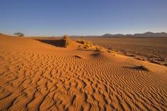 Patronen door de wind in het zand worden geveegd dat stock fotografie