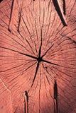 Patronen en texturen van een houten plak Stock Afbeelding