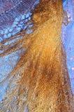 Patronen van de donsachtige sjaal van Orenburg Royalty-vrije Stock Foto