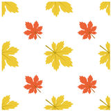 Patroon Autumn Leaf Fall Maple Stock Illustratie