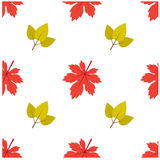 Patroon Autumn Leaf Fall Maple en Blad Royalty-vrije Illustratie