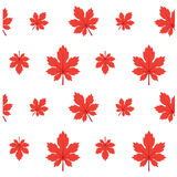 Patroon Autumn Leaf Fall Red Illustration Royalty-vrije Stock Afbeelding