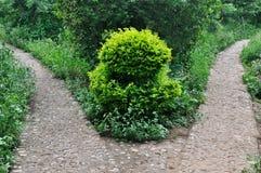 Patroon dat door weg en installatie in tuin wordt samengesteld Stock Afbeelding