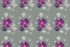 Patroon - lilac en witte de lentebloemen Royalty-vrije Stock Foto's