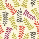 Patroon met bomen Naadloze Achtergrond Royalty-vrije Stock Afbeeldingen