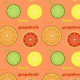 Patroon met citrusvrucht Royalty-vrije Stock Afbeeldingen
