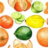 Patroon met citrusvruchten Royalty-vrije Stock Foto's