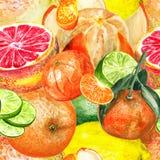 Patroon met citrusvruchten Stock Afbeelding