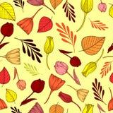 Patroon met de herfstbloemen, takken en bladeren stock illustratie