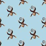 Patroon met een aap 2 Stock Afbeeldingen