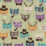 Patroon met katten Stock Afbeeldingen