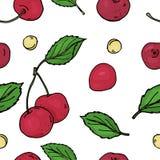 Patroon met kers Heldere rijpe kersen en kuilen op een witte achtergrond Kleurrijke vectorillustratie in schetsstijl vector illustratie