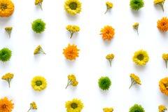Patroon met kleurrijke bloemen Royalty-vrije Stock Fotografie