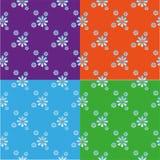 Patroon met madeliefjes Royalty-vrije Stock Fotografie