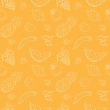Patroon met vruchten en bessen Royalty-vrije Stock Foto