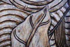 patroon op de natuurlijke houten deur De achtergrond van het concept Royalty-vrije Stock Afbeeldingen
