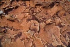Patroon op de steen Royalty-vrije Stock Fotografie