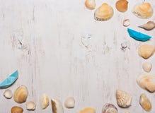 Patroon, samenstelling van shells op een witte achtergrond, hoogste mening Stock Foto's