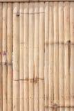 Patroon van bamboe Royalty-vrije Stock Foto