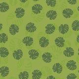 Patroon van bladerenmonstera Stock Afbeelding